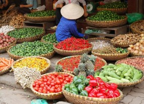 vietnam-travel-22